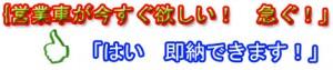 即納リース sokunoubana  300x63